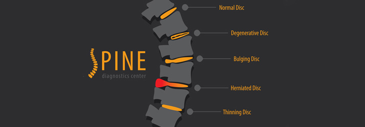 Chiropractic Vineland NJ Spinal Description